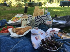 Paris Picnic