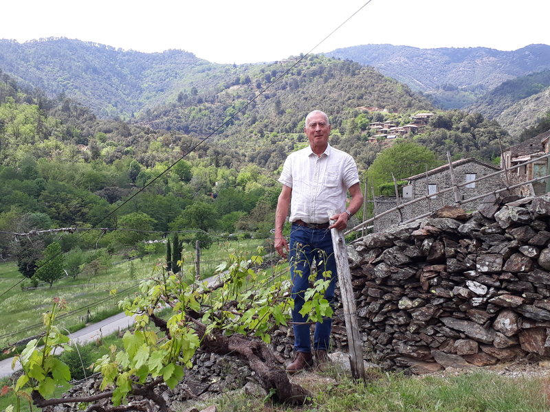 Garnier in the vineyard.