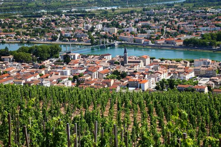Rhone Valley wine