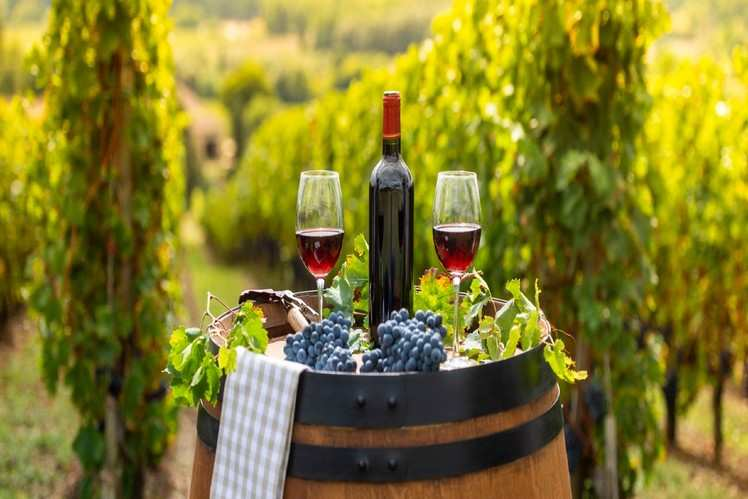 Wine of Bordeaux